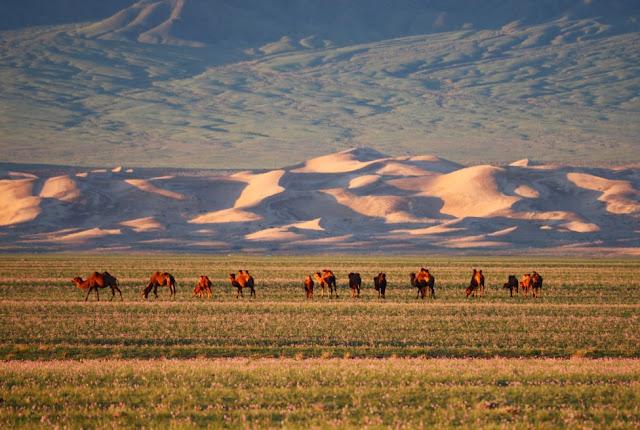 MONGOLIË: MET DE 4X4 DOOR DE GOBI WOESTIJN (1): VAN ULAANBAATAR NAAR BYANZAG