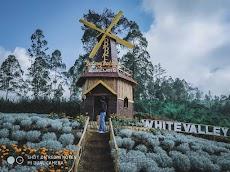 Pondok Bunga Edelweis, Spot Keren Untuk Hunting Foto di Bali