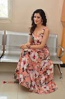 Actress Richa Panai Pos in Sleeveless Floral Long Dress at Rakshaka Batudu Movie Pre Release Function  0158.JPG