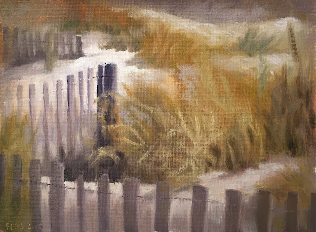 focusing with value study of beach fence Feb-5-2019