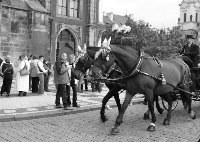 Mustavalkoisia muistoja Prahasta 13
