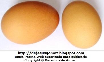 Foto de un par de huevos
