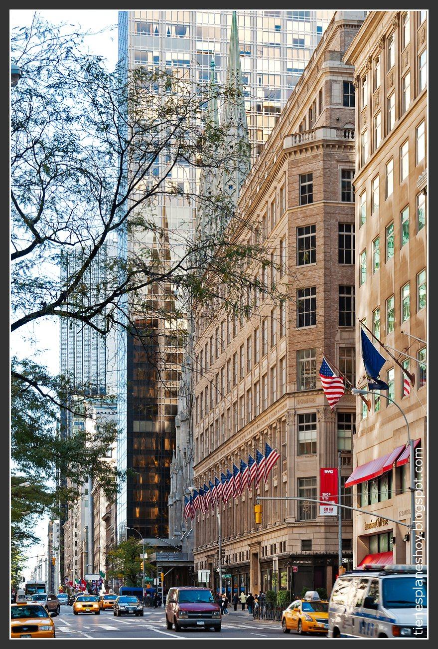 Quinta Avenida ( 5th Avenue)