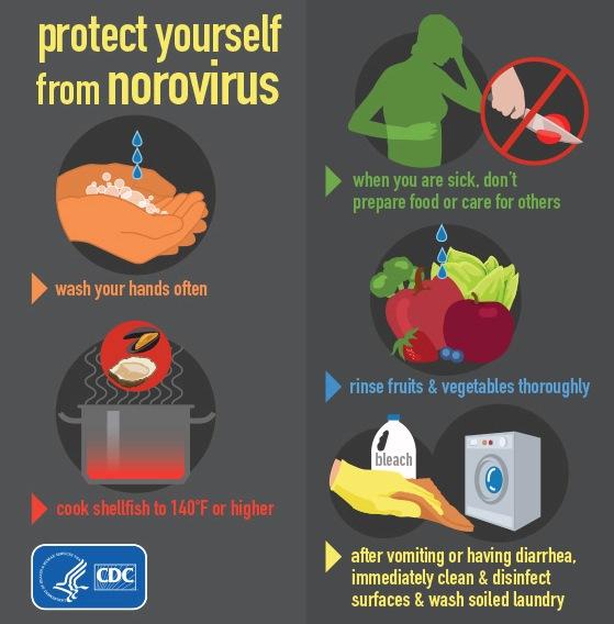 The Health Website : Norovirus Infection (Gastroenteritis)