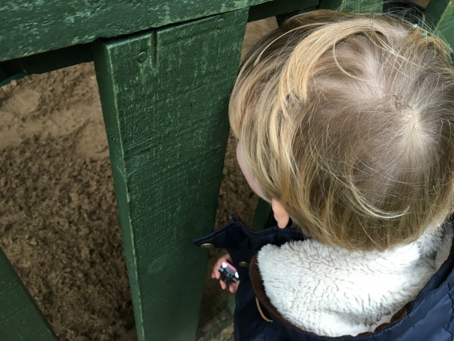 toddler-looking-through-fence-at-Cardiff-Castle