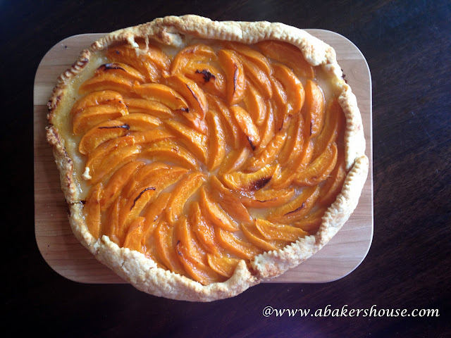 apricot galette overhead photo