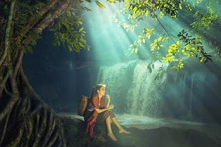 cerita mistis pesugihan di taman nasional alas purwo