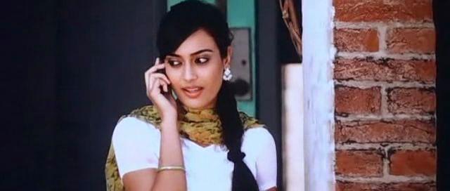 Mediafire Resumable Download Link For Punjabi Movie Raula Pai Gaya (2012)
