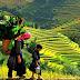 Sapa culture tour – Fabulous Adventure of Ethnic Groups in Sapa