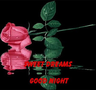 sweet dream wish with rose image
