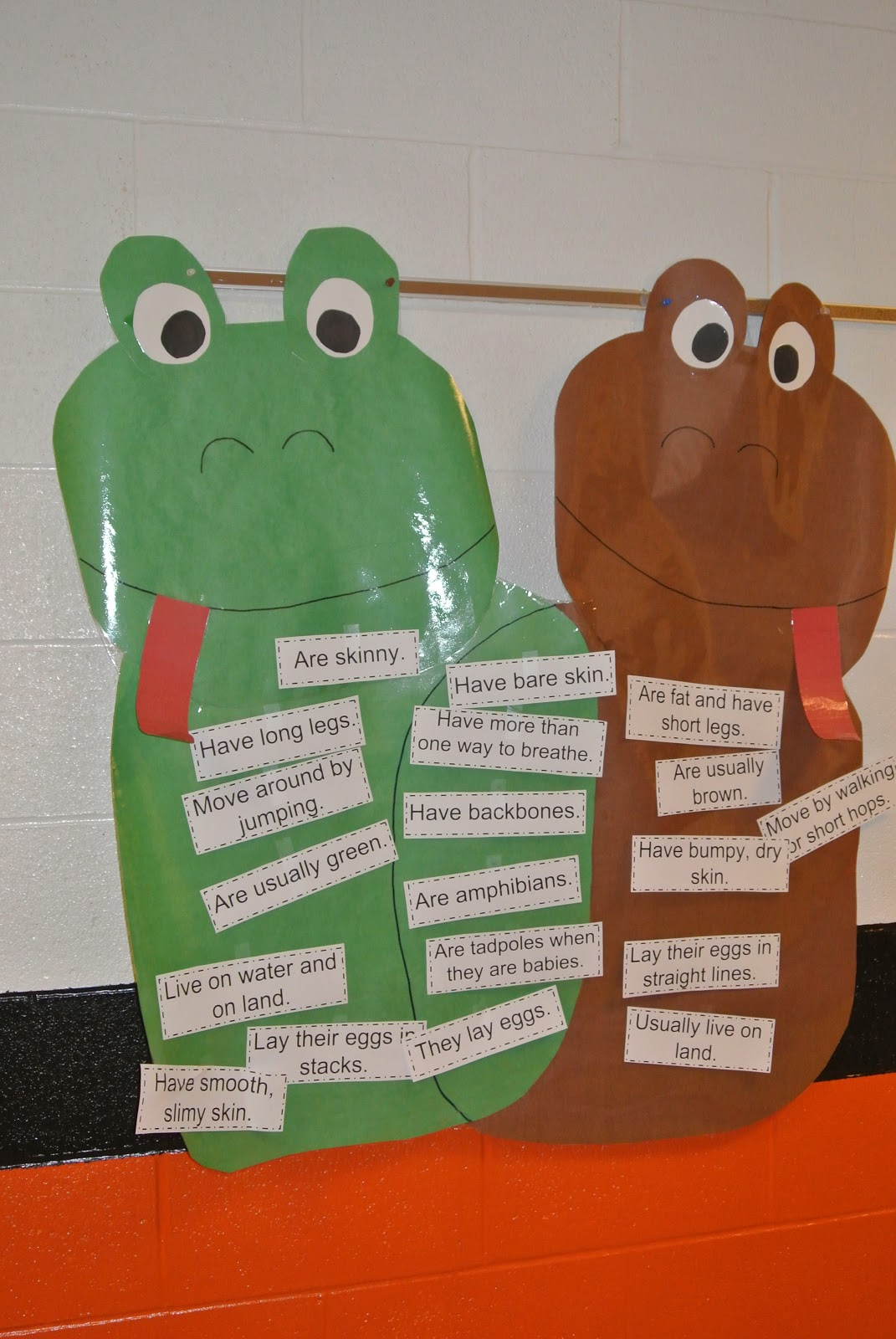 frog and toad venn diagram wiring for honeywell thermostat little warriors unit math literacy centers
