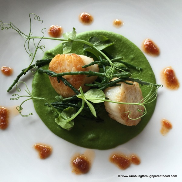 The scallops come recommended