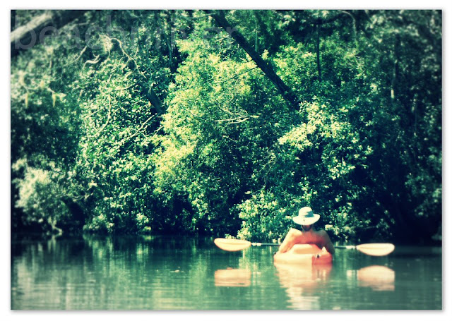 You Can Still Find Solitude Kayaking With BeachnRiver Kayak Rentals