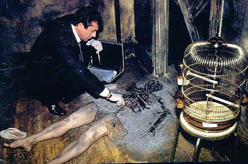 Spontaneous human combustion theories