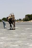 felicidad, desierto de marruecos, viajes a marruecos, marrakech, bereber
