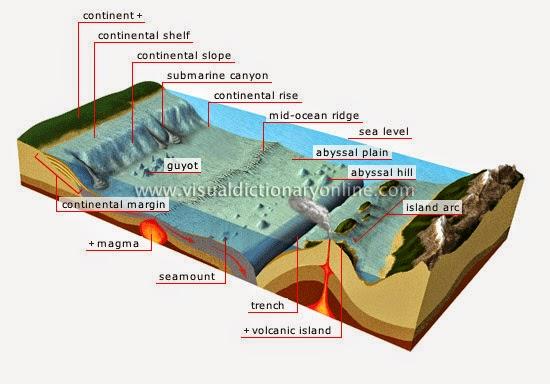ocean floor model diagram wiring diagram Ocean Floor Project 5th Grade 3d diagram of ocean floor index listing of wiring diagrams