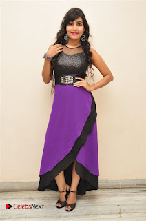 Telugu Actress Rachana Smith Stills at Money is Honey Audio Release  0106.jpg