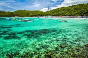 Pulau Koral Pattaya