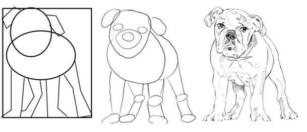 çizilmiş hayvan resim örenekleri
