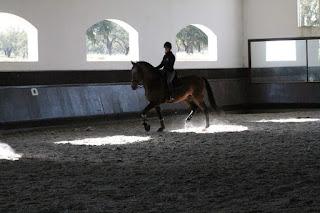 Portugal, Riitta reissaa, Horsexplore, ratsastusmatka