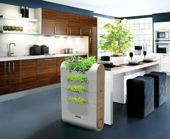 Indoor Apartment Herb Garden