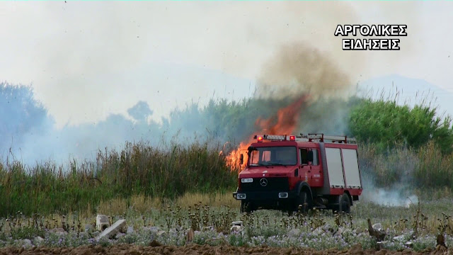Ναύπλιο: Πυρκαγιά στο Ηραίο