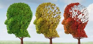 مرض الزهايمر أو الشيخوخة أو الخرف