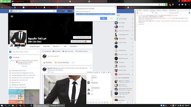 Hướng dẫn lấy Token Facebook bằng Code F12 An Toàn Siêu Trâu