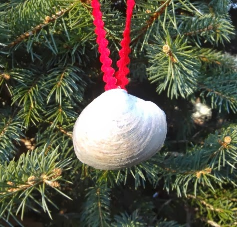 glue ribbon to shell to make ornament