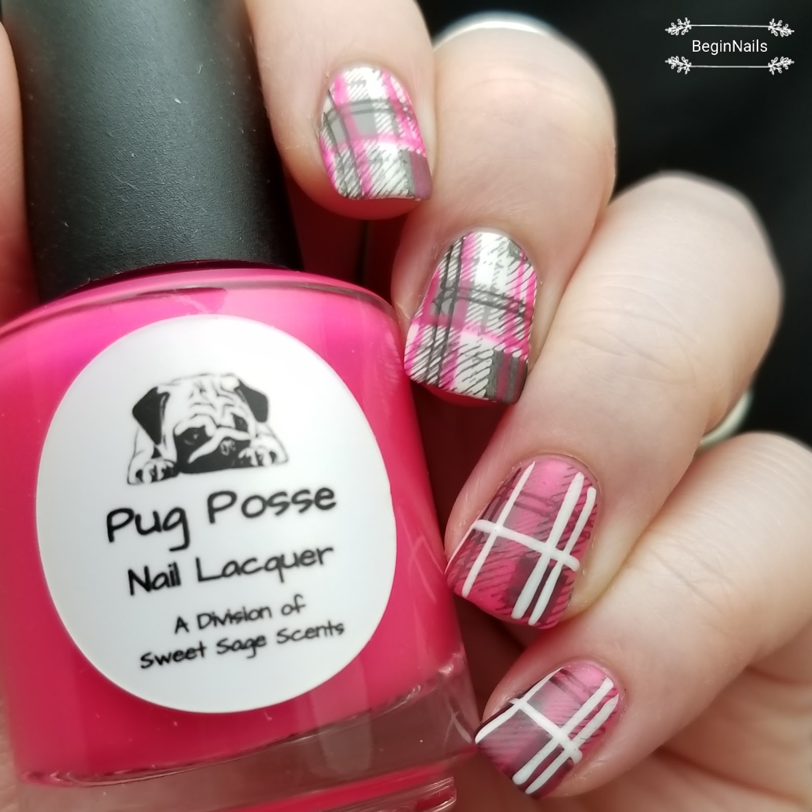 Let\'s Begin Nails: Digit-al Dozen: Indie Love - Pug Posse Nail Lacquer