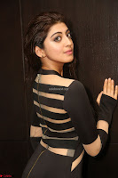 Pranitha Subhash in a skin tight backless brown gown at 64th Jio Filmfare Awards South ~  Exclusive 121.JPG