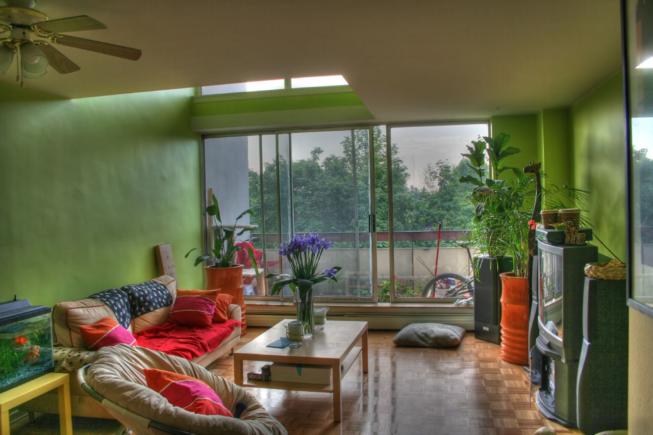 Living Room Designs With Plants