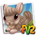 Fv 2 Tan Chinchilla  (baby ,adult,prized)