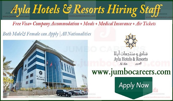 star hotel jobs in Abu Dhabi and Al Ain, Latest hotel jobs with accommodation,
