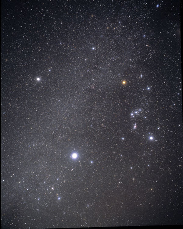 Constellation Of The Month Constellation Canis Minor