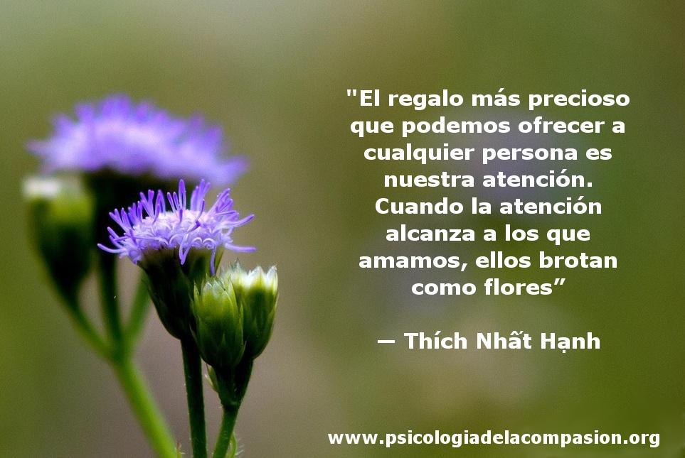 PSICOLETRA ZARAGOZA: Thich Nhat Hanh