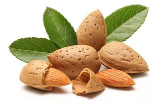 Manfaat Kacang Almond