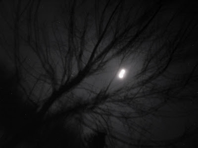 drifting moon after midnight