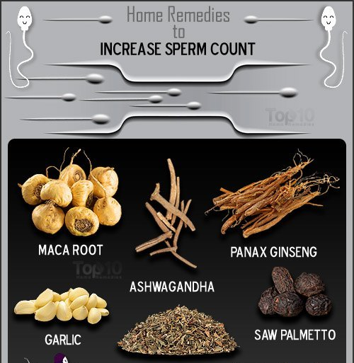Remedies to increase sperm count
