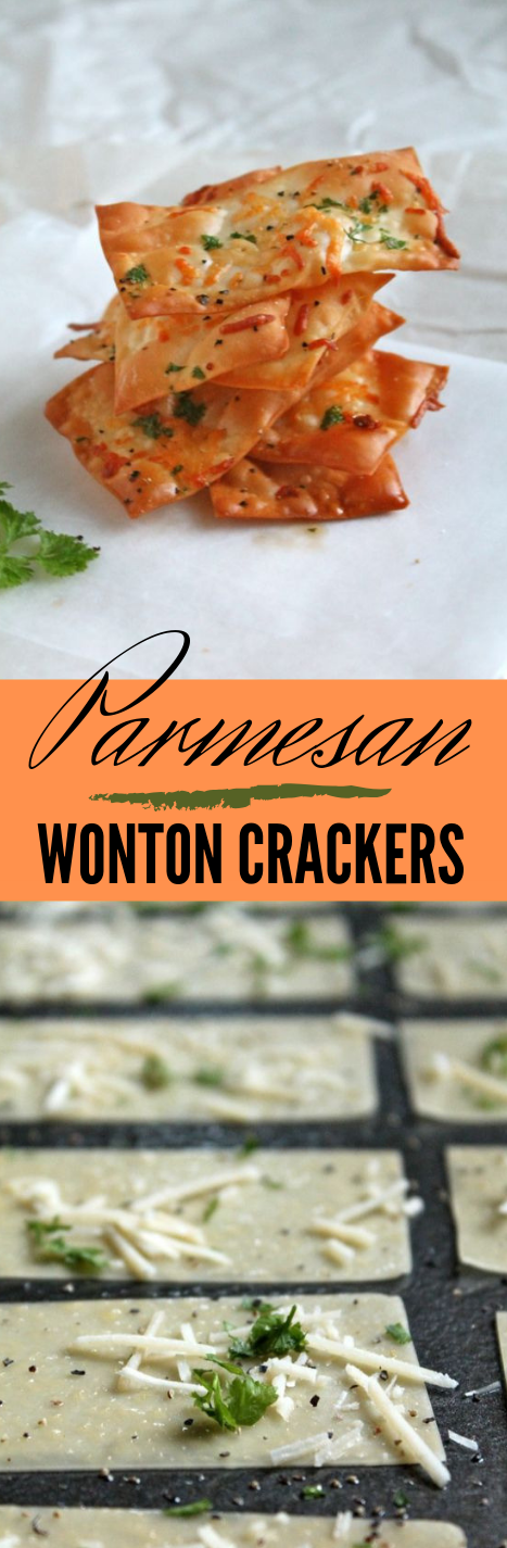 PARMESAN WONTON CRACKERS #dinner #food