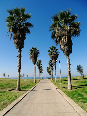Tel Awiw plan zwiedzania
