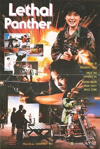 Lethal Panther 1990 Dual Audio Hindi UNRATED 500MB DVDRip 480p Full Movie Download Watch Online 9xmovies Filmywap Worldfree4u