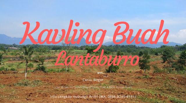 Tanah dijual Murah di Bogor - Kavling Buah Lantaburro Cariu