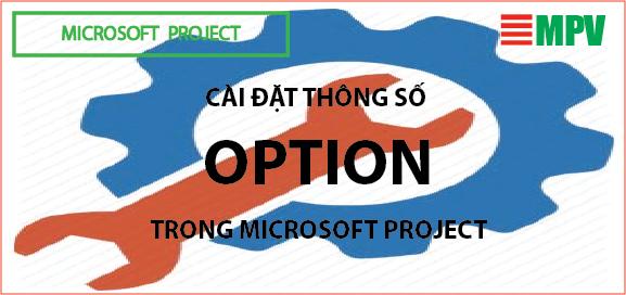 ĐTC - Cài đặt thông số option trong microsoft project