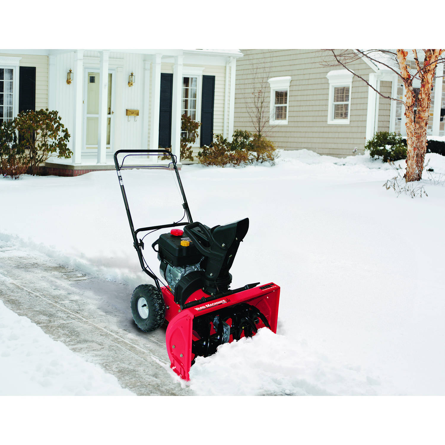 The Caretaker Chronicles: So, I went to buy a snow blower.