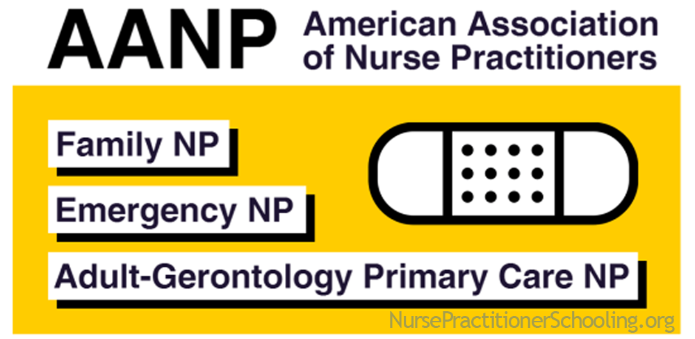 nurse practitioner certifications