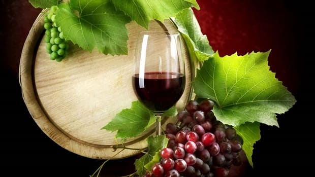Curso de vinhos IFSC Canoinhas