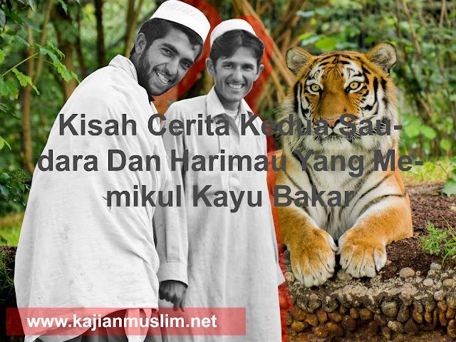 Kisah Cerita Kedua Saudara Dan Harimau