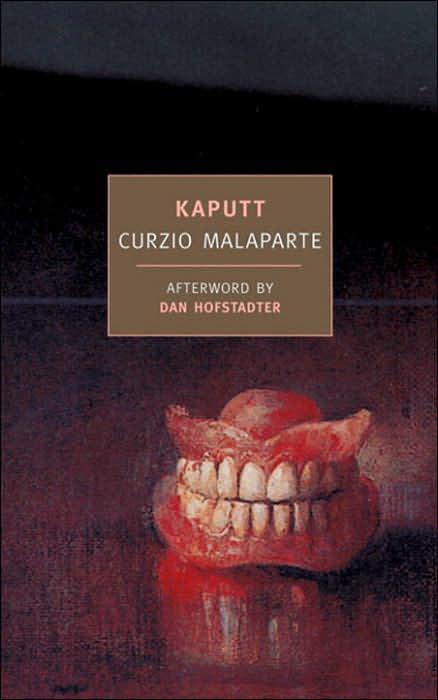 A Common Reader Kaputt Summary