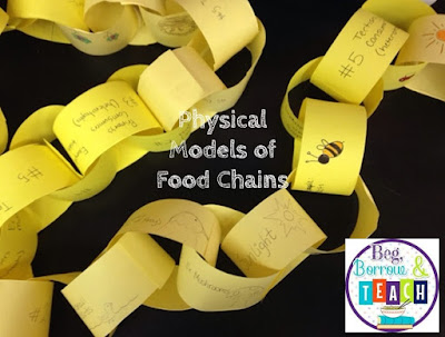Creating Physical Models of Food Chain Models